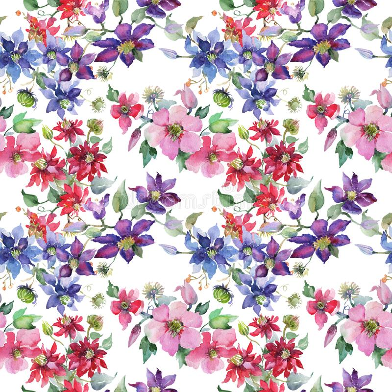 Clematis bouquet floral botanical flowers. Watercolor background illustration set. Seamless background pattern. stock illustration