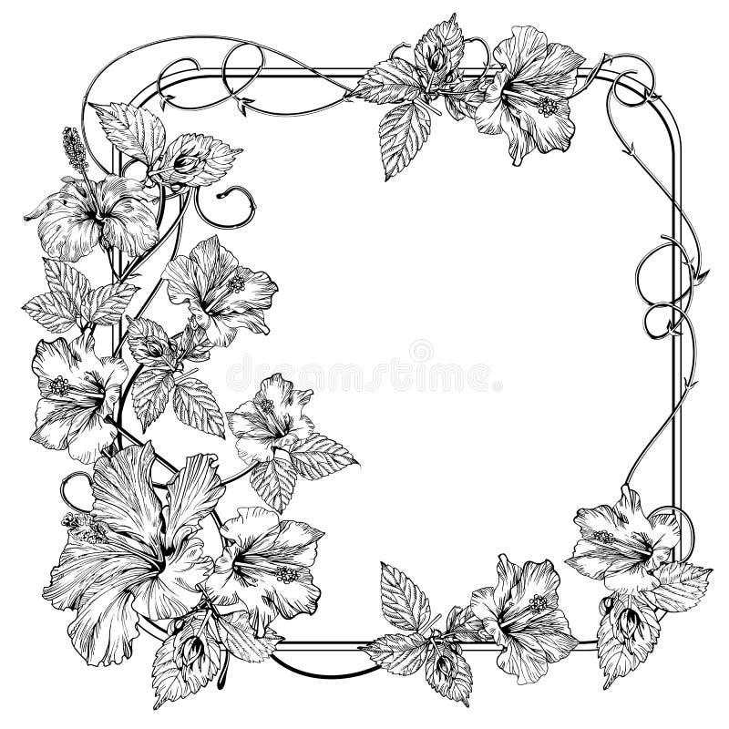 Clematis kwiat Roczników eleganccy kwiaty Czarny i biały wektorowa ilustracja botanika wektor ilustracji