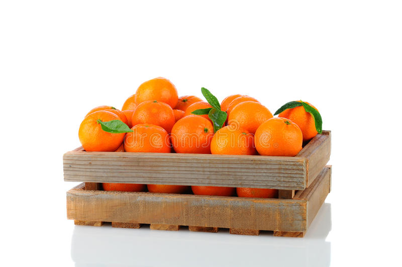 Clementina na caixa de madeira foto de stock