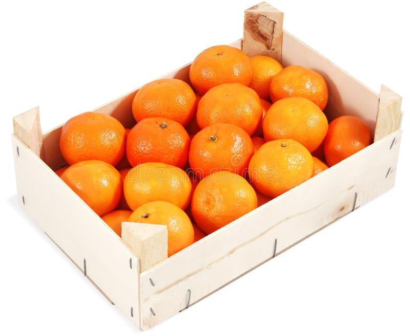 Clementinas en envase imágenes de archivo libres de regalías