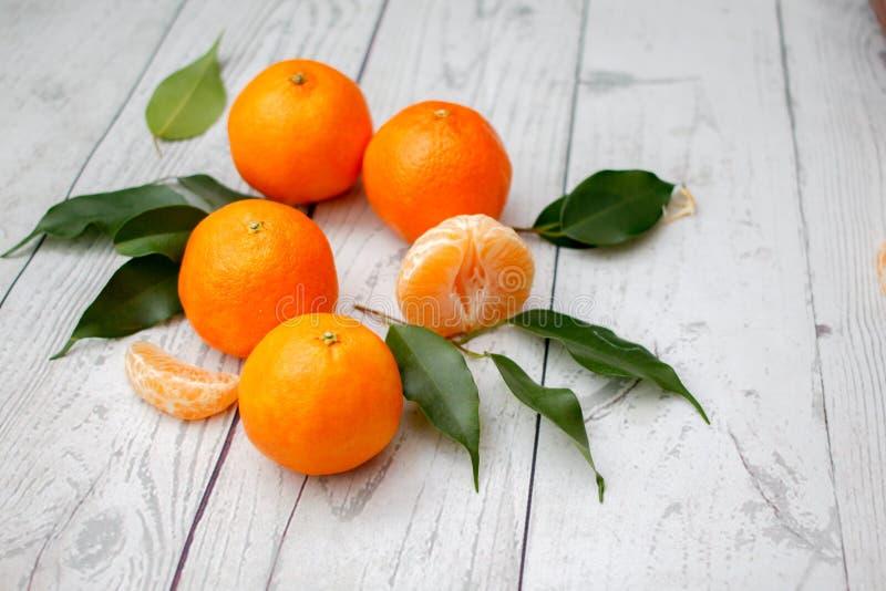 clementine royaltyfria bilder
