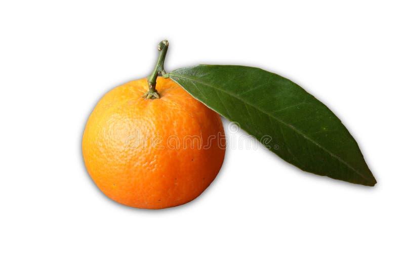 clementine royaltyfria foton