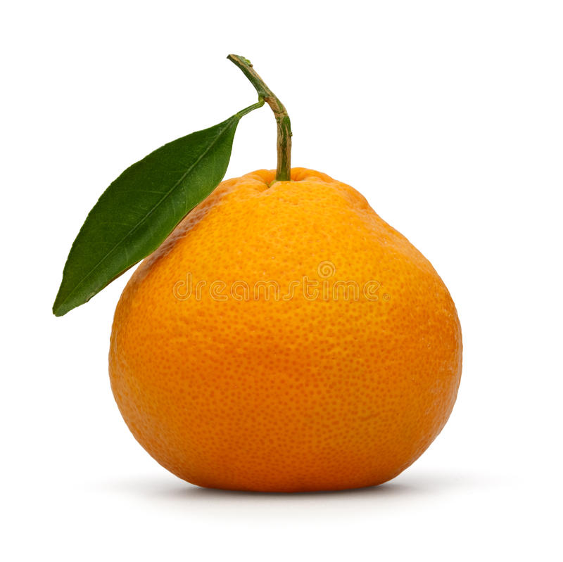 Clementine royalty free stock photography