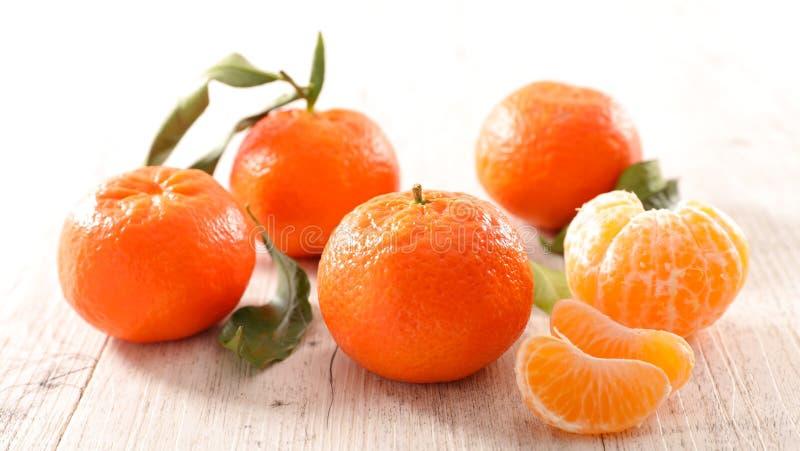 Clementine och blad royaltyfria bilder