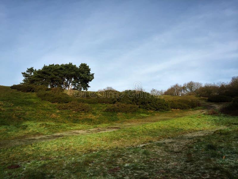 Clentheuvels, Worcestershire stock afbeelding