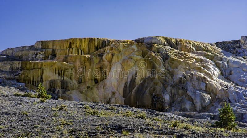 Cleopatra Terrace no parque nacional Wyoming EUA de Mammoth Hot Springs Yellowstone fotos de stock