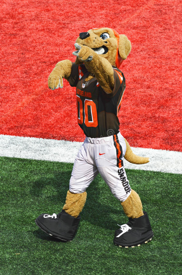 Cleveland Browns NFL Mascot Chomps. NFL Cleveland Browns Mascot, Chomps, makes an appearance at the 2016 Orange and Brown Scrimmage held at Ohio Stadium on the royalty free stock photography
