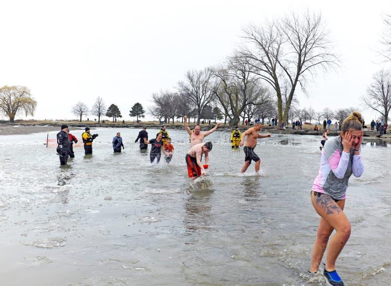 Cleveland Polar Plunge för Special Olympics i Cleveland, Ohio, Förenta staterna royaltyfria bilder