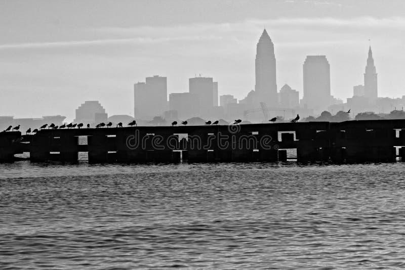Cleveland Skyline över Lake Erie royaltyfri fotografi
