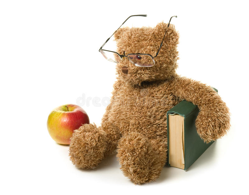 Clever teddy bear. On a white background stock photos