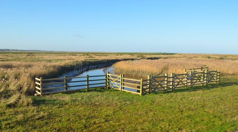 Cley沼泽自然保护北部诺福克 免版税库存图片