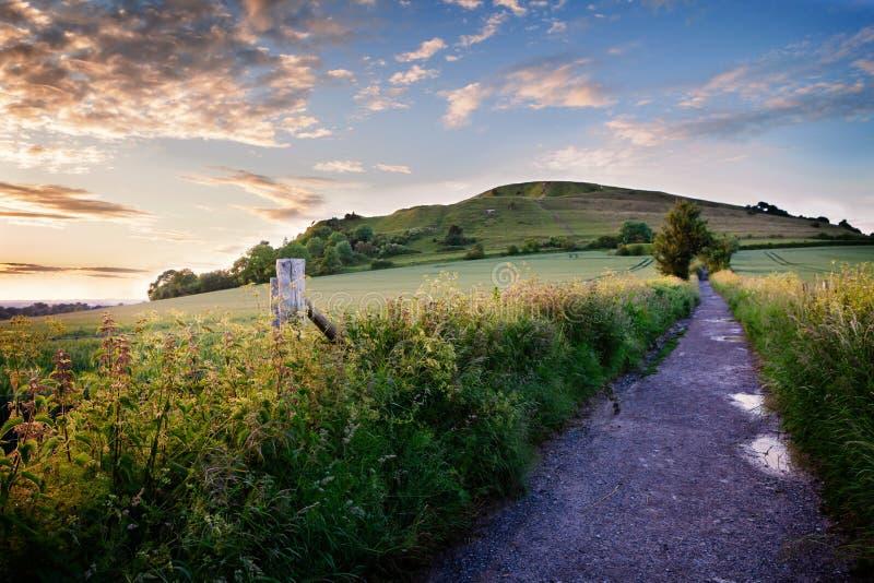 Cleyheuvel, Wiltshire, in Juni stock foto's