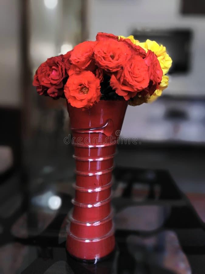 Clic del vaso di fiore con sfuocatura fotografia stock libera da diritti
