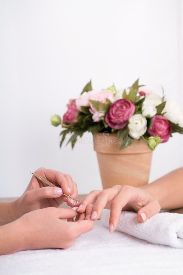 Cliente e manicuro no salão de beleza do tratamento de mãos fotografia de stock royalty free