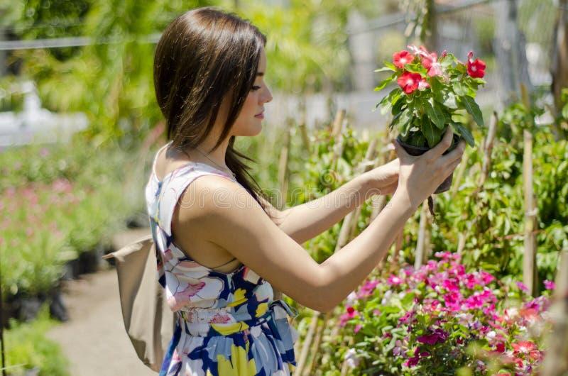 Cliente lindo que compra algunas plantas fotos de archivo libres de regalías