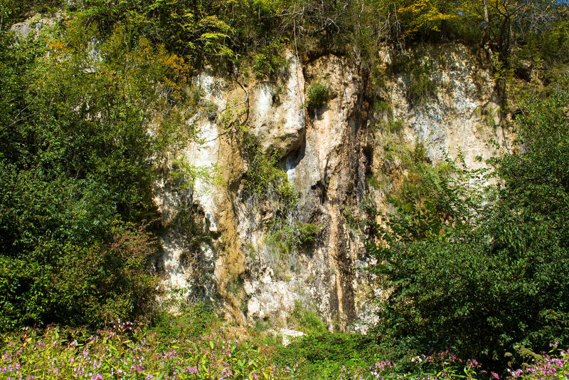 Download Cliff stock photo. Image of precipice, cliff, mound, tree - 24249210