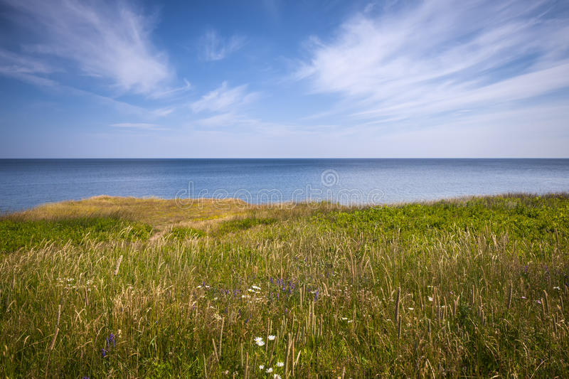 Cliff edge and ocean. View of Atlantic ocean from cliff edge in Prince Edward Island, Canada royalty free stock image