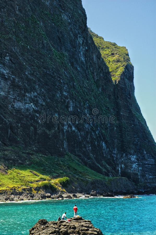 Cliff face, vegetation and glistening ocean. A turquoise translucent, glistening ocean by an imposing cliff face on the island of Madeira stock photos