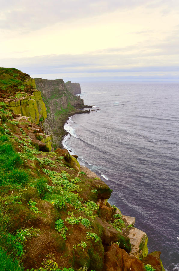 Cliff, Grimsey. Reef in Grimsey Island, Iceland royalty free stock photography