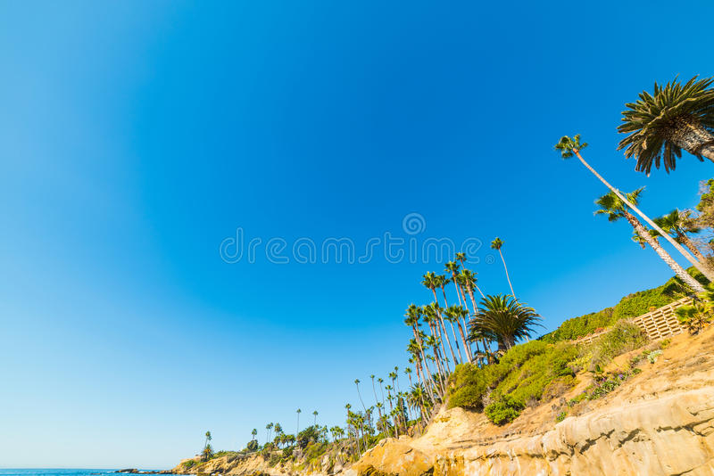 Cliff in Laguna Beach. California royalty free stock images