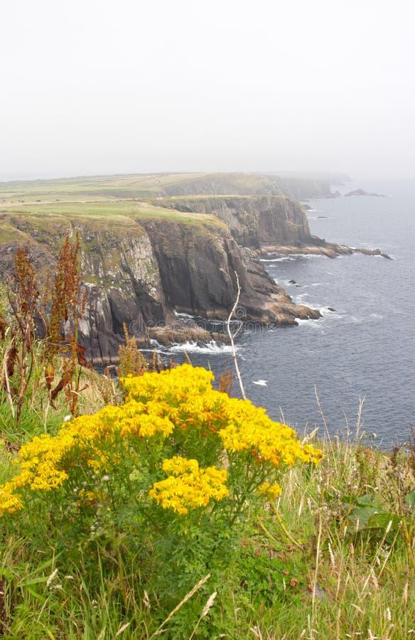 Cliff near Dingle stock photos