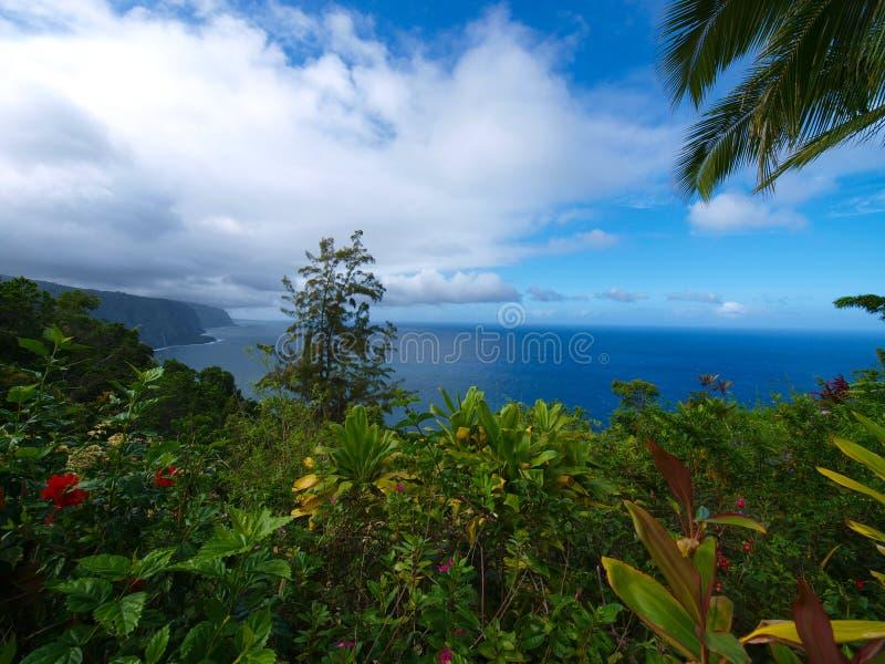cliff ogród obraz stock