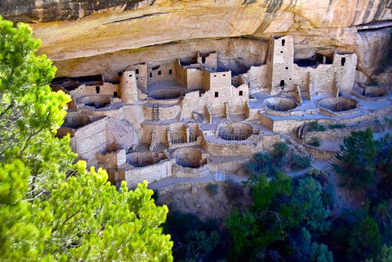 Cliff Palace på Mesa Verde National Park royaltyfria bilder