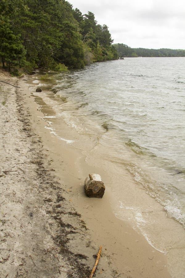 Cliff Pond no parque estadual de Nickerson em Cape Cod fotos de stock royalty free