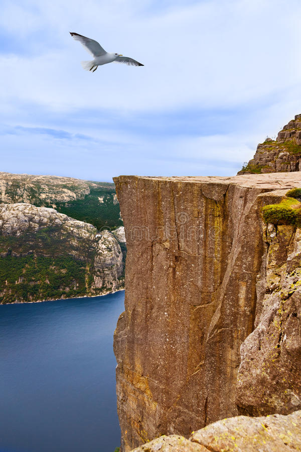 Free Cliff Preikestolen In Fjord Lysefjord - Norway Royalty Free Stock Images - 50073099