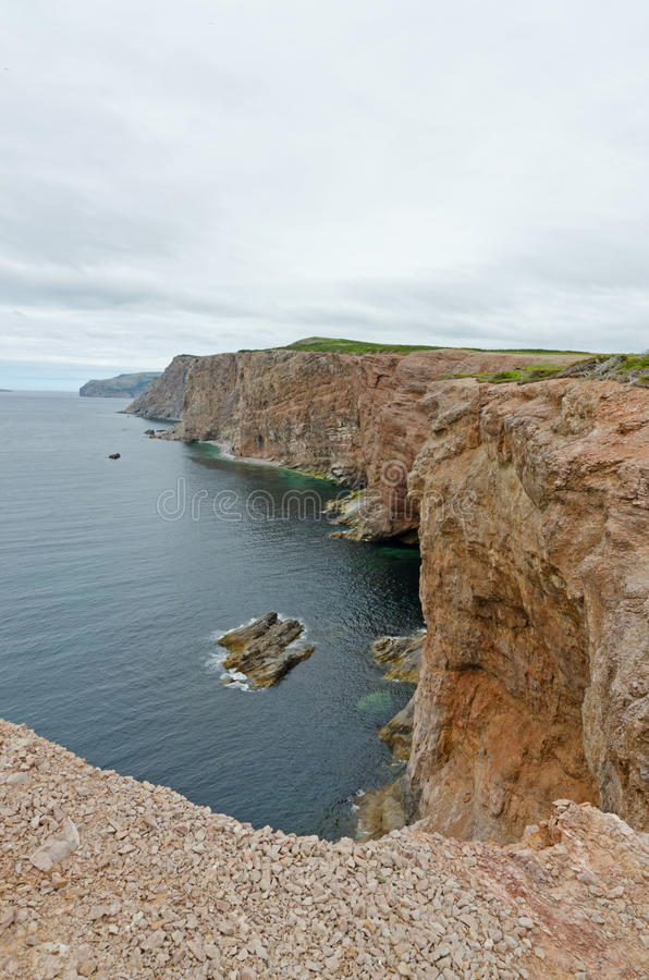 Cliff and shore of Newfoundland royalty free stock images