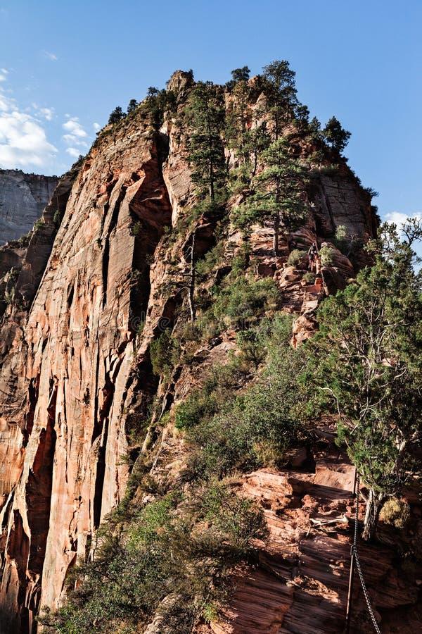 Cliff Trail To The Top degli angeli del punto di riferimento che atterrano picco, U.S.A. immagini stock libere da diritti