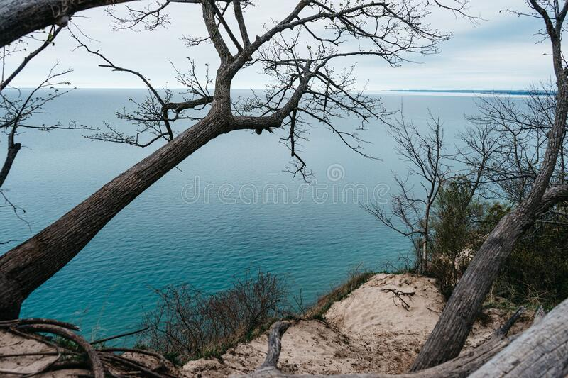 Cliff With Trees By Sea Free Public Domain Cc0 Image