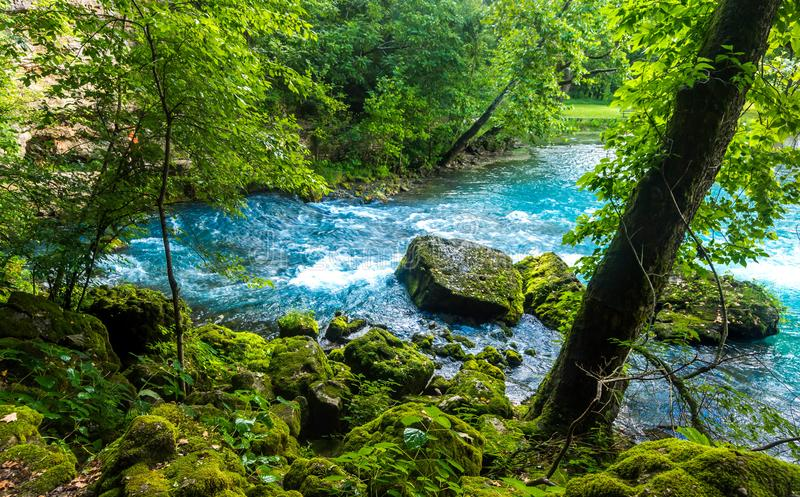 Cliff view of Big Springs fork. Hiking the trails of Big spring fork stream stock images