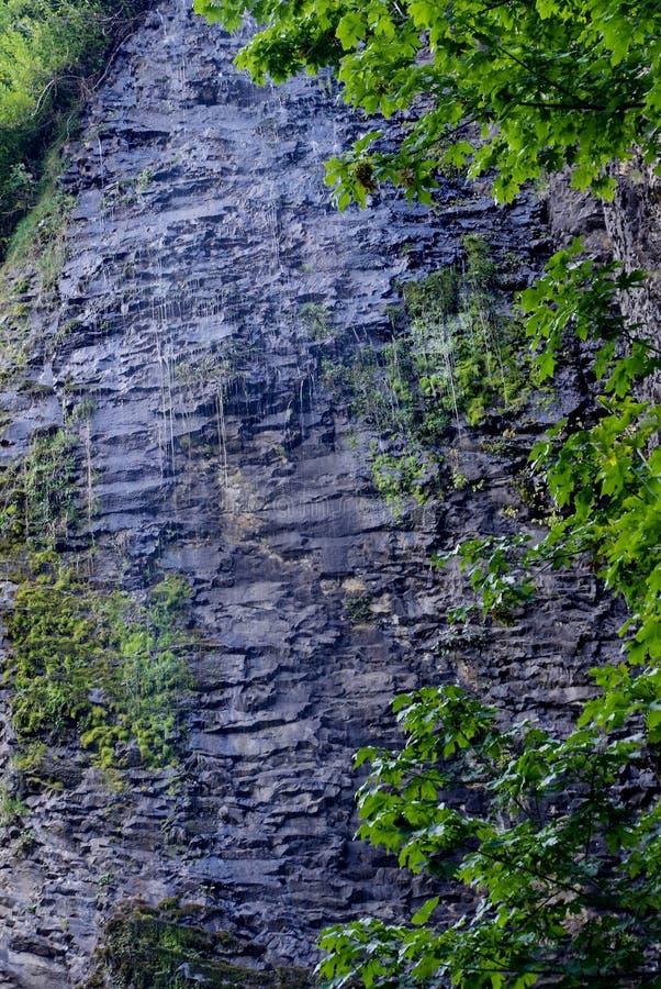 Cliff Waterfall, Eagle Creek, gorge de Colombie, Orégon photos stock