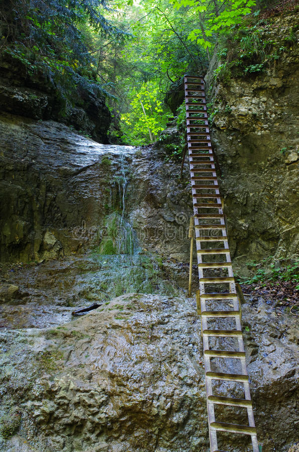 Free Cliff With Ladder In Slovak Paradise Royalty Free Stock Photography - 65648197