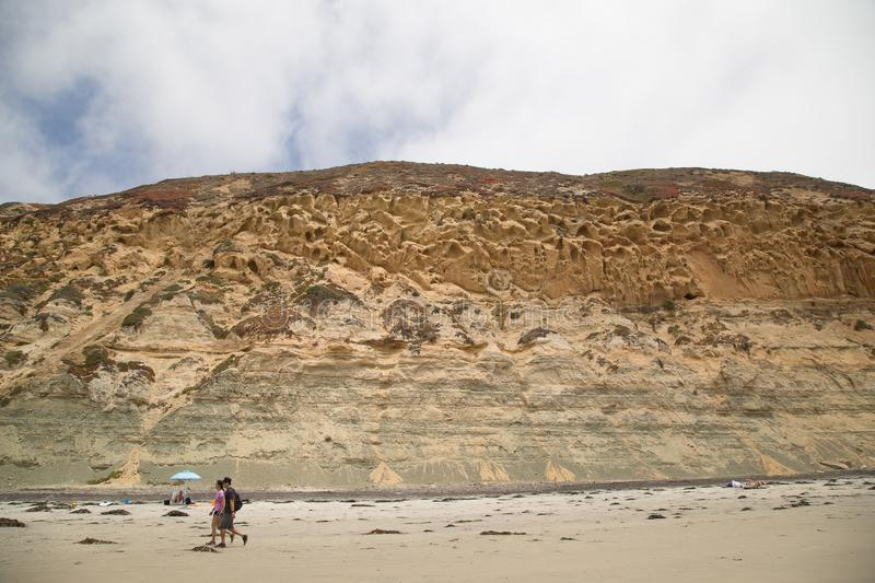 Cliffs and beach at Torrey Pine State Park in California stock image