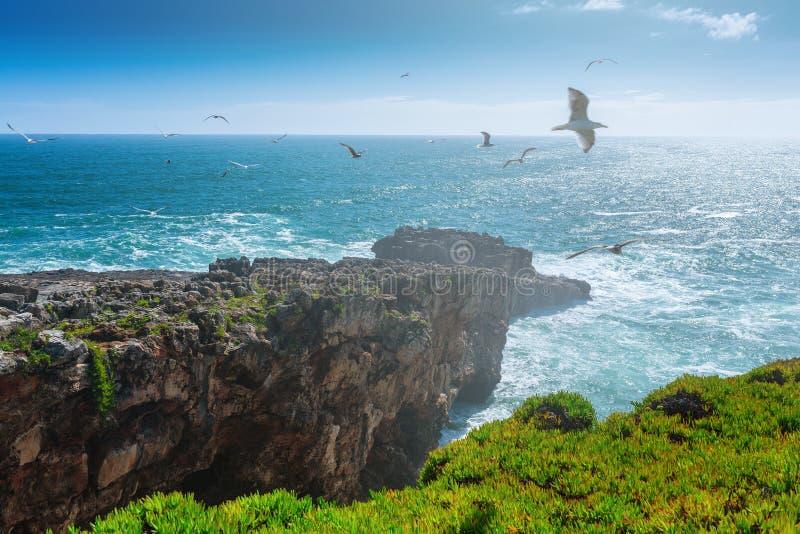 The cliffs on the coast of the Atlantic Ocean. Ocean waves, Casc stock image