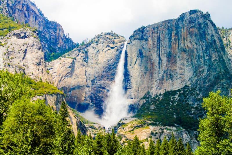 Cliffs, Conifer, Daylight Free Public Domain Cc0 Image