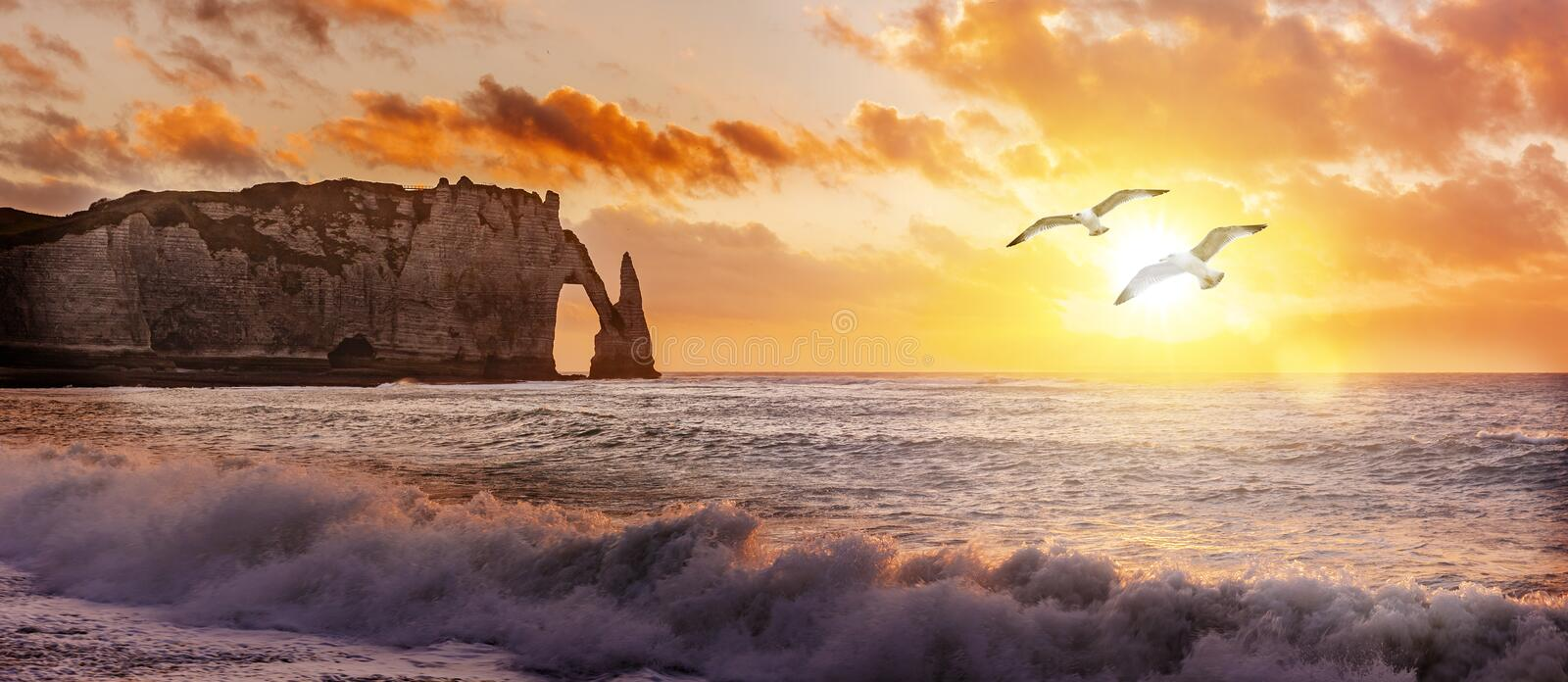 Cliffs of Etretat at sunset with flying Seagulls stock photography