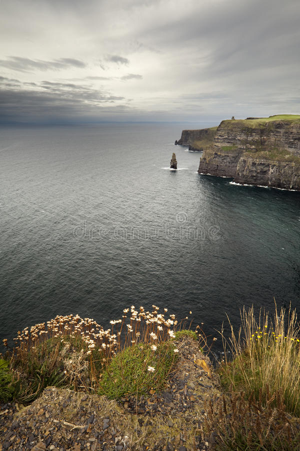 Download Cliffs Of Mother Stock Photo - Image: 16728070