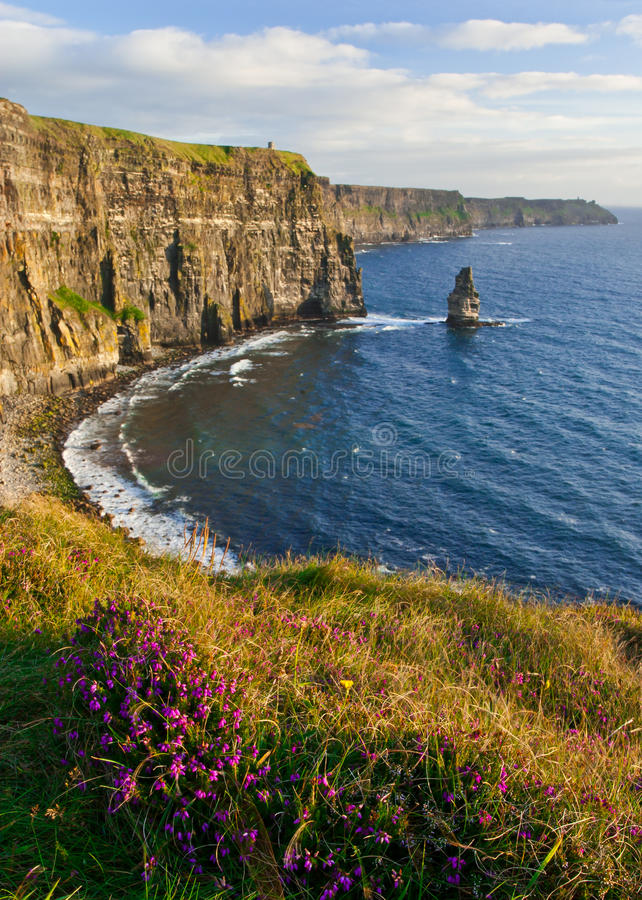 Free Cliffs Of Moher Royalty Free Stock Image - 20671376