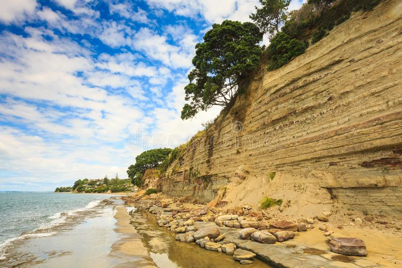 Coastal Sandstone Cliffs With Rock Bands and Overhanging Trees. These cliffs are slowly being eroded by the action of the tide, but the concrete walkway at the royalty free stock photo