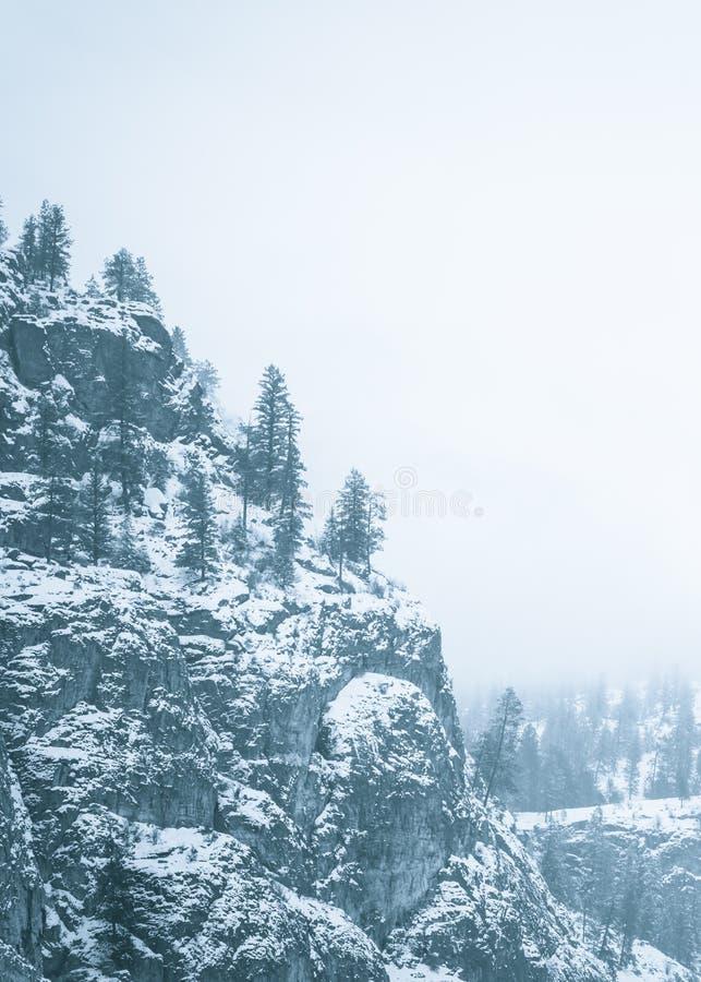 Cliffside et arbres à feuilles persistantes couverts dans la neige et entourés par le brouillard épais dans le monochrome images stock