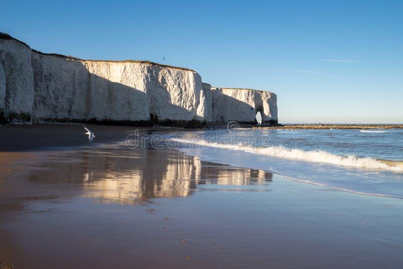 Cliffside spacer i odbicia, botaniki zatoka, Kent fotografia stock
