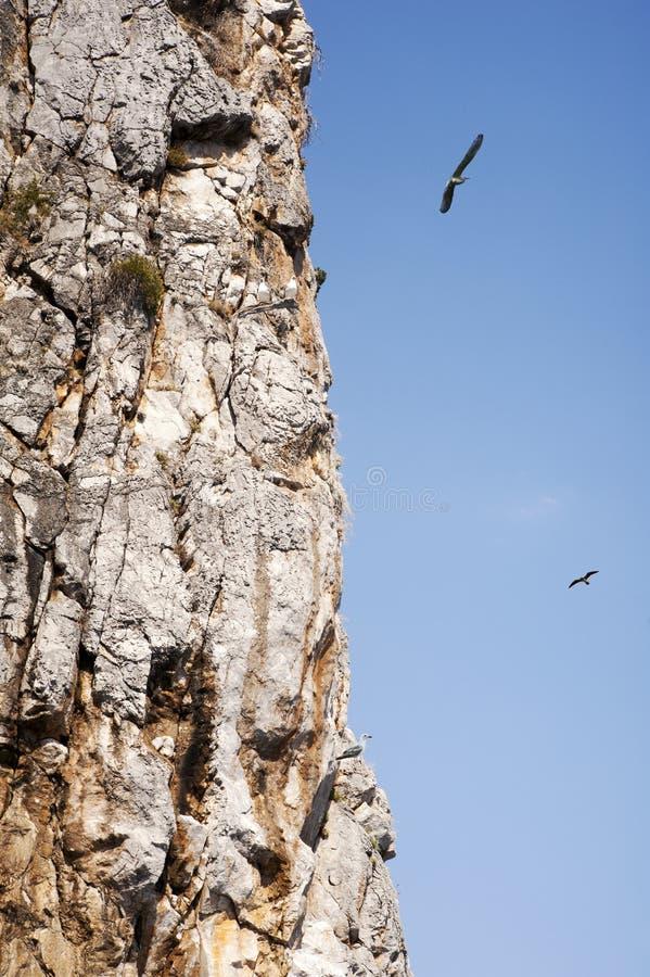 clifftop stock fotografie