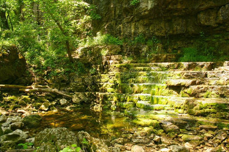 Clifton Gorge Ohio USA brook beside tree in forest. Clifton Gorge Ohio USA bubbling brook beside tree in forest during spring stock photography
