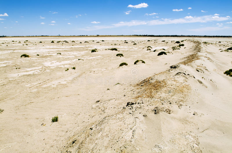 Climate Change. Heat baked ground cracked with only hardy shrubs growing in the salty soil stock photos