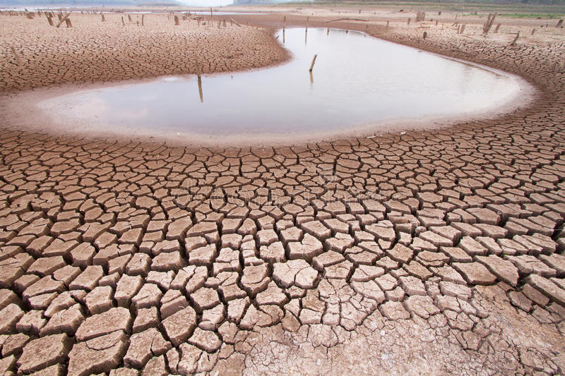 Climate change drought land. With water in lake royalty free stock photo