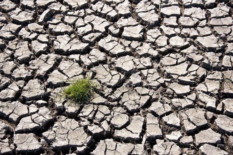 Climate change - dry land vector illustration