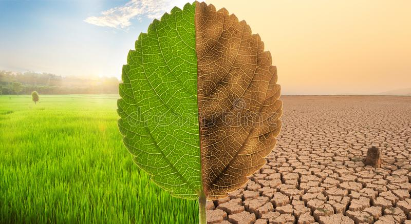 Climate change and Environment Disaster concept. stock photo